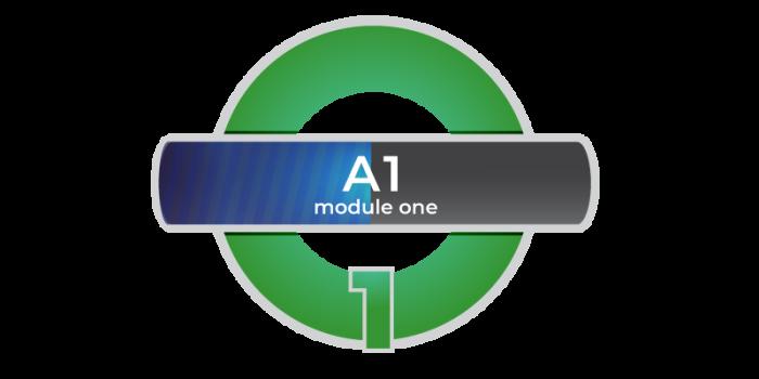 A1 modulo 1 online