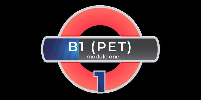 Corso di inglese YL B1 PET modulo 1 online in Videoconferenza