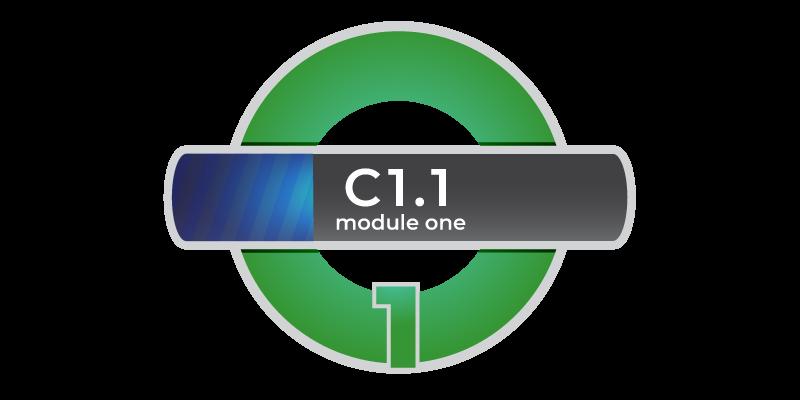 Corso di inglese C1.1 modulo1 online in Videoconferenza